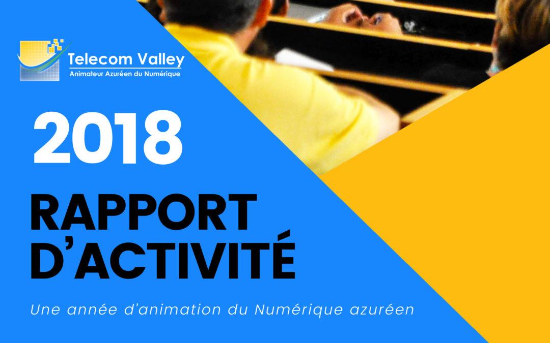 Rapport d'activité Telecom Valley 2018