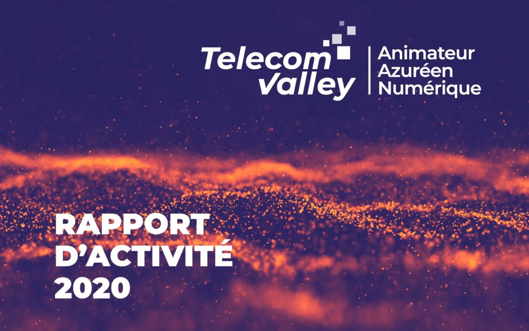 RAPPORT D'ACTIVITÉ TELECOM VALLEY 2020